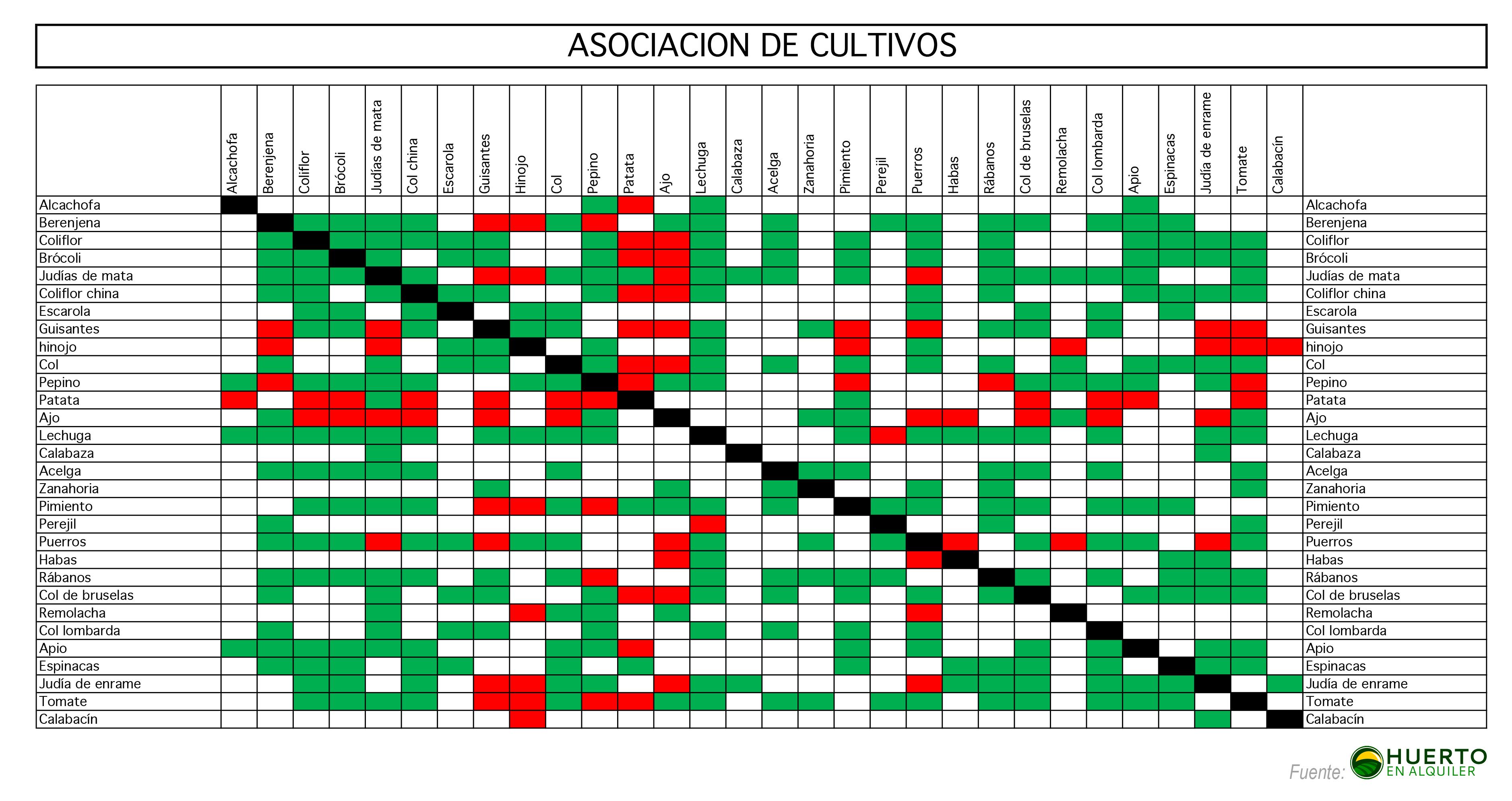 Asociaci n de cultivos for Asociacion de hortalizas