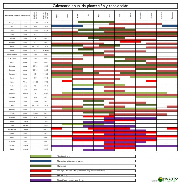 Calendario Anual de Plantación y Recolección